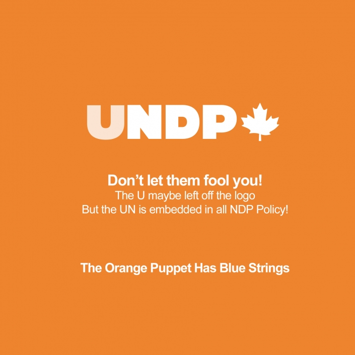 UNDP (NDP) are UNITED NATIONS PUPPETS! Don't let them fool you! The U maybe left off the logo But the UN is embedded in all NDP Policy! The Orange Puppet Has Blue Strings #UNDP